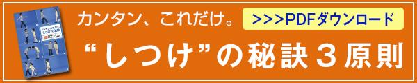 600120_しつけ3原則_2